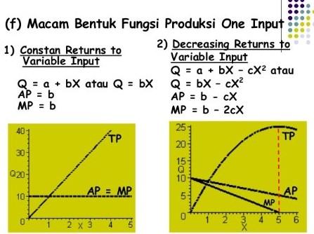 Definisi-Model-Fungsi-Produksi