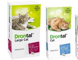 Rekomendasi-Obat-Cacing-Kucing-yang-Ampuh